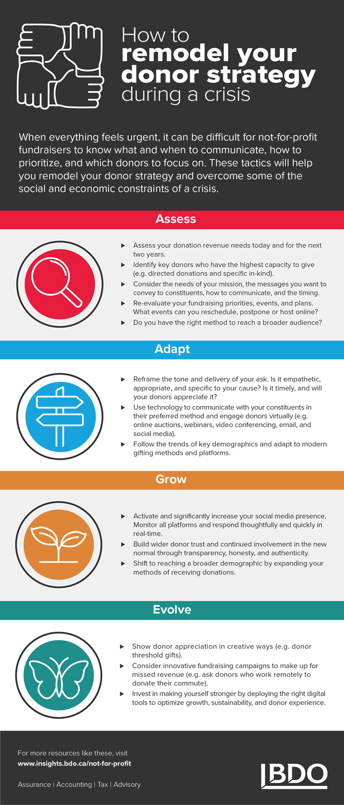 NTL_NPO_12May20_Donor-strategy-infographic_1456x3410-(2).png